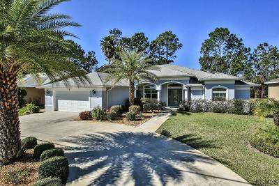 Palm Coast Single Family Home For Sale: 93 Bickford Dr