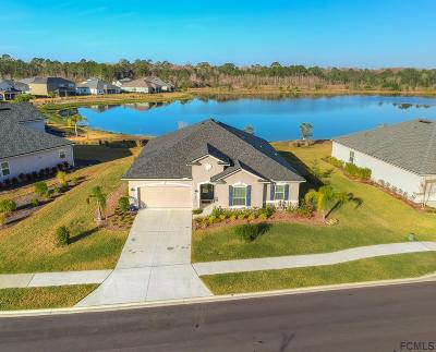 St Augustine Single Family Home For Sale: 182 Montiano Circle
