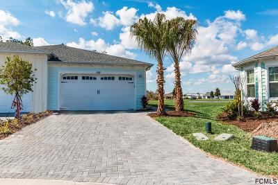 Daytona Beach Single Family Home For Sale: 397 Tiki Terrace
