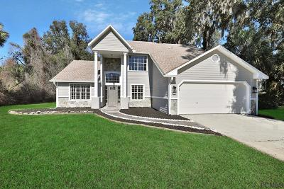 Ormond Beach Single Family Home For Sale: 1395 Aleut Ln