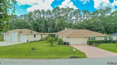 Palm Coast Single Family Home For Sale: 91 Ryberry Drive