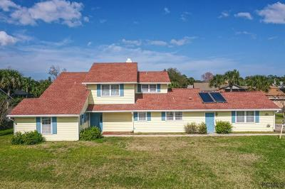 Palm Coast Single Family Home For Sale: 122 Cochise Court