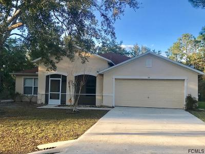 Palm Coast Single Family Home For Sale: 59 Raleigh Drive