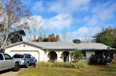 Palm Coast Single Family Home For Sale: 120 Westgrill Dr