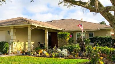 Palm Coast Single Family Home For Sale: 88 Cochise Court