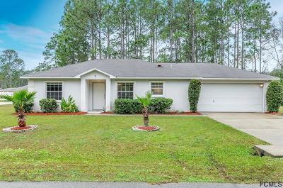 Palm Coast Single Family Home For Sale: 1 Regency Drive