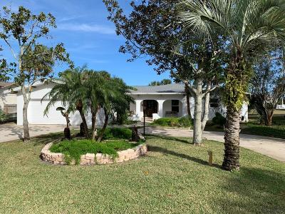 Flagler Beach Single Family Home For Sale: 740 Lambert Ave