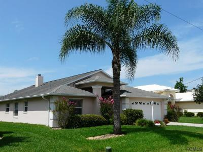 Palm Coast Single Family Home For Sale: 9 Comet Court