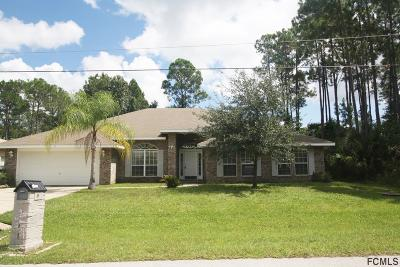 Pine Grove Single Family Home For Sale: 9 Pinelynn Ln