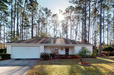 Palm Coast Single Family Home For Sale: 46 Beauford Ln