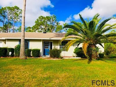 Palm Coast Single Family Home For Sale: 181 Bridgehaven Drive