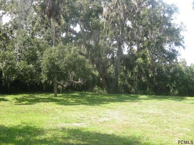 Flagler Beach Residential Lots & Land For Sale: 6 Magnolia St