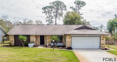 Palm Coast Single Family Home For Sale: 81 Fort Caroline Ln