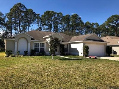 Palm Coast Single Family Home For Sale: 17 Woodside Drive