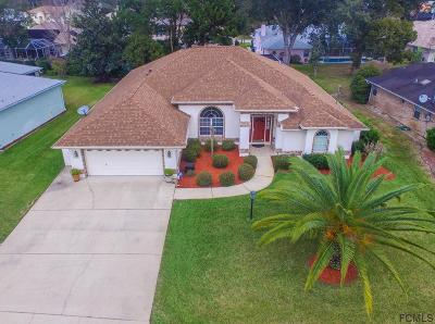 Palm Coast Single Family Home For Sale: 259 Wellington Drive