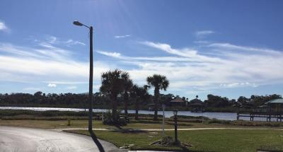 Flagler Beach Residential Lots & Land For Sale: 17 Windward Drive