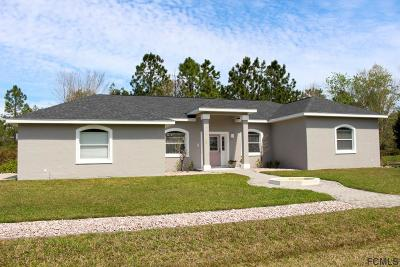Palm Coast Single Family Home For Sale: 72 Leidel Dr