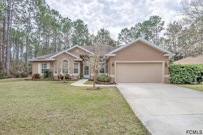 Palm Coast Single Family Home For Sale: 30 Seaton Valley Path