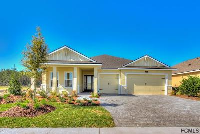 Daytona Beach Single Family Home For Sale: 273 Cyan Ave