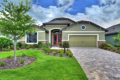 Daytona Beach Single Family Home For Sale: 277 Cyan Ave