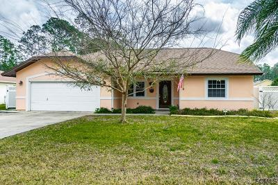 Palm Coast Single Family Home For Sale: 58 Point Pleasant Drive