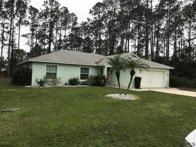 Palm Coast Single Family Home For Sale: 4 Rodger Place