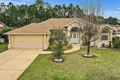 Palm Coast Single Family Home For Sale: 14 Burnside Drive