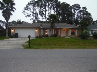 Palm Coast Single Family Home For Sale: 100 Beachway Dr