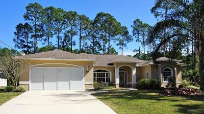 Palm Coast Single Family Home For Sale: 70 Piedmont Drive