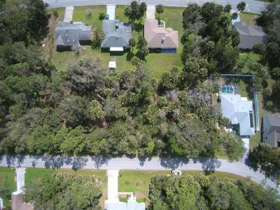 Belle Terre Residential Lots & Land For Sale: 33 Palm Ln