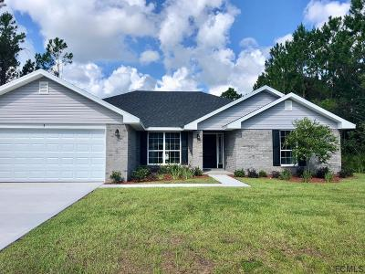 Matanzas Woods Single Family Home For Sale: 3 Lindberg Lane