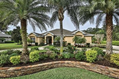 Ormond Beach Single Family Home For Sale: 1094 Hampstead Lane