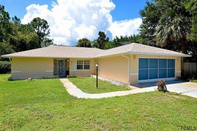 Palm Coast Single Family Home For Sale: 22 Pineland Ln