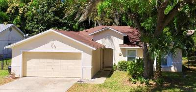 Palm Coast Single Family Home For Sale: 13 Fleetwood Drive