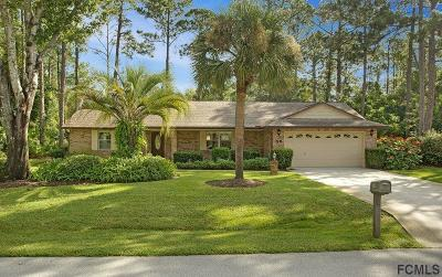 Palm Coast Single Family Home For Sale: 58 Brittany Lane