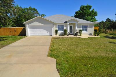 Matanzas Woods Single Family Home For Sale: 8 Lamar Lane