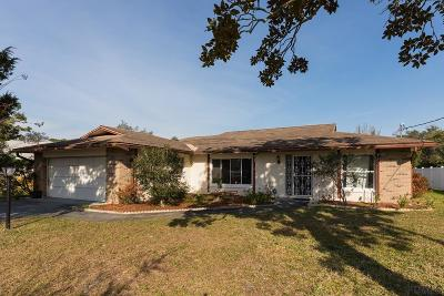 Palm Coast Single Family Home For Sale: 73 Fortress Place