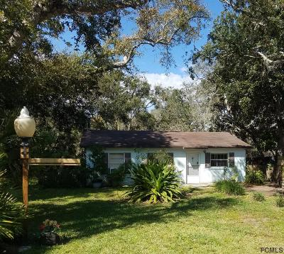 Palm Coast Single Family Home For Sale: 19 Shady Ln N
