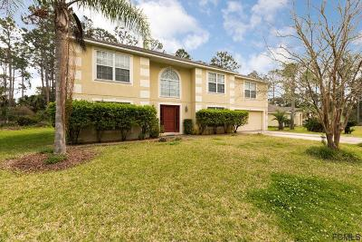 Palm Coast Single Family Home For Sale: 88 Barrington Dr