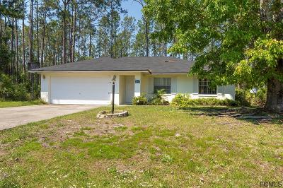 Palm Coast Single Family Home For Sale: 112 Ryan Drive