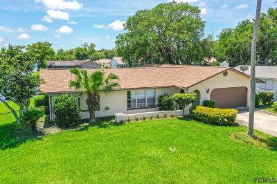 Palm Coast Single Family Home For Sale: 16 Fern Court