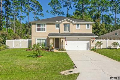 Palm Coast Single Family Home For Sale: 88 Brunswick Lane