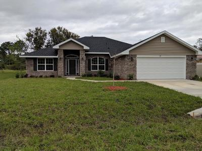 Palm Coast Single Family Home For Sale: 109 Bickford Dr