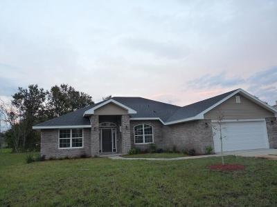 Matanzas Woods Single Family Home For Sale: 109 Bickford Dr