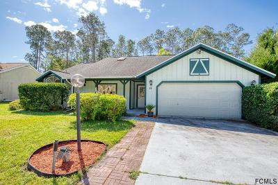 Palm Coast Single Family Home For Sale: 19 Weyanoke Lane
