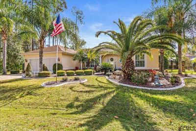 Palm Coast FL Single Family Home For Sale: $337,900