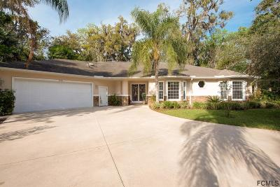 Ormond Beach Single Family Home For Sale: 4186 Sanora Lane
