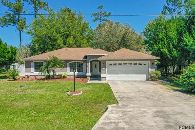 Palm Coast Single Family Home For Sale: 11 Ryapple Lane