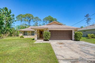 Palm Coast Single Family Home For Sale: 56 Pineland Ln