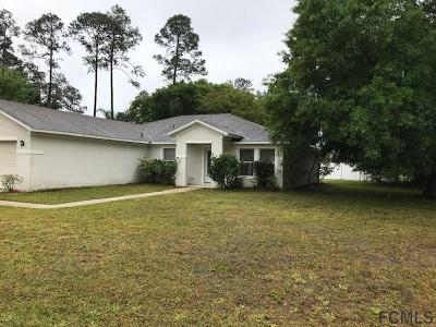 Palm Coast Single Family Home For Sale: 12 Richmond Drive